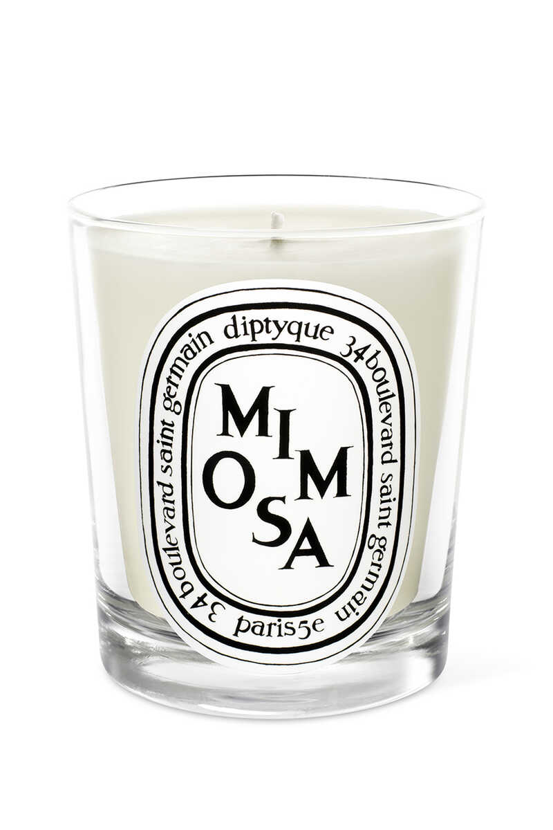 Mimosa Candle image number 1