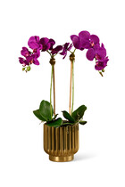 Artificial Orchid Arrangement