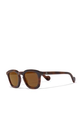 D Frame Tortoise Sunglasses