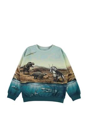Dinosaur Print Sweatshirt