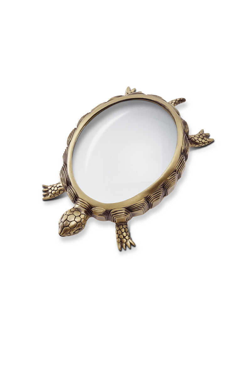 Turtle Magnifying Glass image number 1