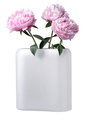 Medium Nude Vase