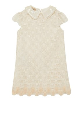 Tulle Embroidery Dress